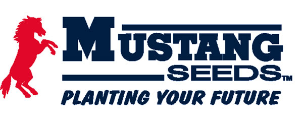 Mustang Seed